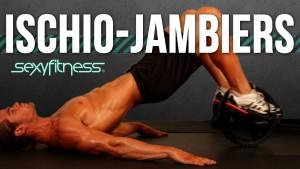 Curl Ischio-Jambiers avec Power Wheel: Exercices Poids de Corps Jambes | Musculation du Centre